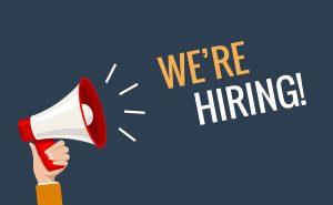 We hiring now banner job offer vector background. Hiring promotion megaphone employee illustration